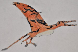 pterosaur seen by Aaron Tullock in Texas in about 1995