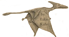 Cuban pterosaur seen by Eskin Kuhn