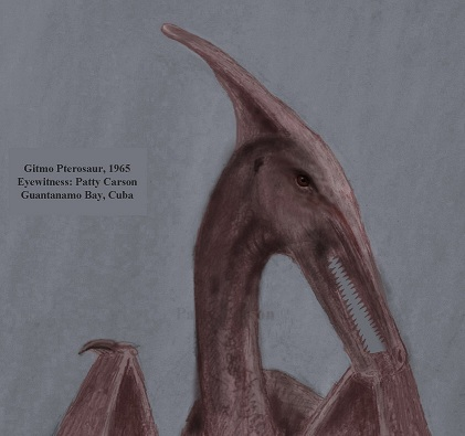 Patty Carson's sketch of the &quot;dinosaur bird&quot; seen in Cuba